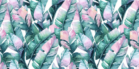 Exotic leaves background. Hand painted natural illustration