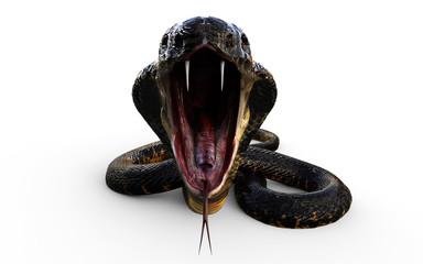 3d Illustration King Cobra The World's Longest Venomous Snake Isolated on White Background, King Cobra Snake, 3d Rendering