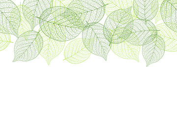 Fresh green seamless background material Wall mural