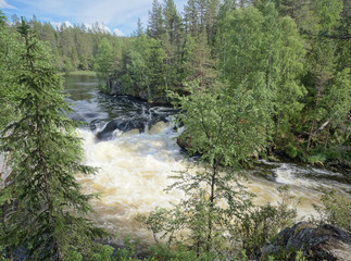 Majestic Myllykoski rapids at the Oulanka National Park in Kuusamo, Finland. Green forest framing the flowing water. Beautiful, sunny summer day for hiking.