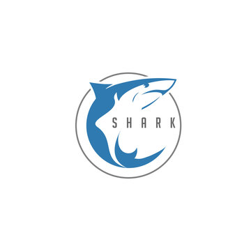 Shark Logo Vector in Circle Negative Space Style Design.