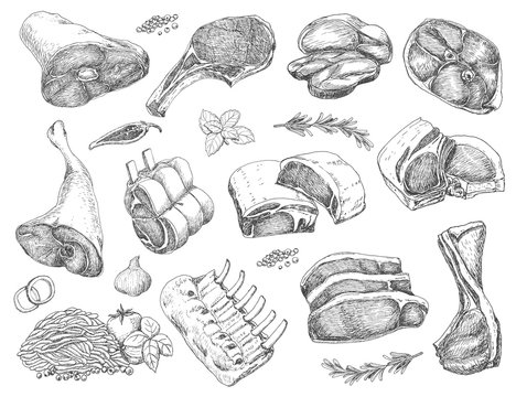 Vector set of different meats in sketch style