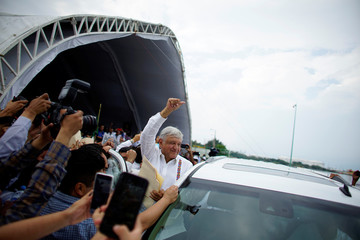 The Wider Image: Wild cats, boas are obstacles in Mexican president's refinery race