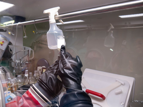 scientists working in safety cabinet fume hood for microbiological testing