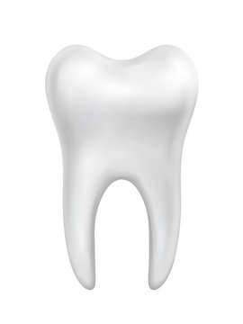Vector white beautiful shiny tooth illustration isolated on white background