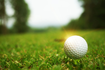 golf ball close up in grass field with sunset. Golf ball close up in golf coures at Thailand