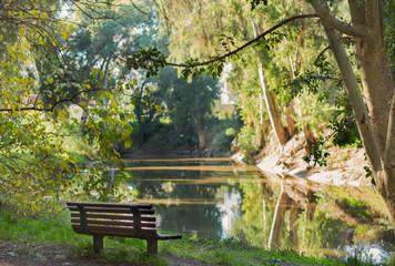 Bench on yarkon river