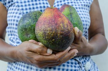 Close-up Avocado Fruits