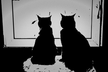Two cats in front of a window, illustration in black and white
