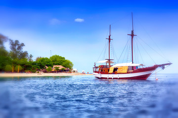 sailing wooden ship by the sea