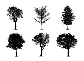 silhouette tree set