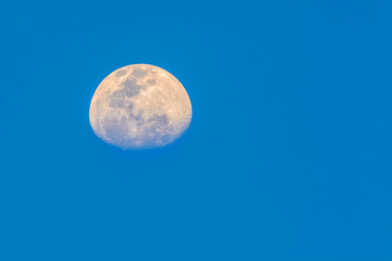 Half moon  with sky blue background in evening seen from Bangkok, Thailand, clipping path.