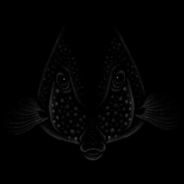 The Vector logo fish for T-shirt design or outwear.  Fishing style fish background.
