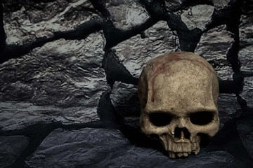 human skull to side of stone background