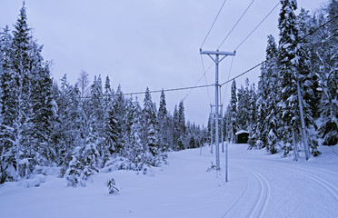 Ruka / Finland: Well prepared cross-Country ski trail along an overhead power line on a swathe through the forest on a snowy day in February