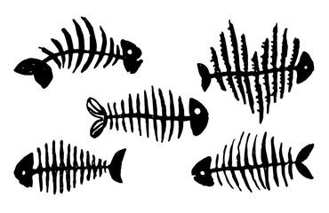 Vector Hand drawn sketch of fish skeleton illustration on white background
