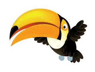 cartoon scene with toucan on white background - illustration for children