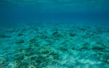 Curacao Cas Abou Beach