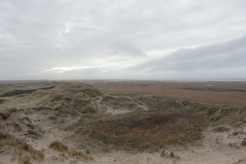 Poster de jardin Desert de sable Denmark Nature landscape