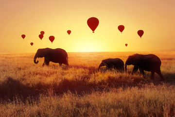 A group of African elephants against the sky with balloons at sunset. African fantastic image. Africa, Tanzania, Serengeti National Park. Summer wonderland.