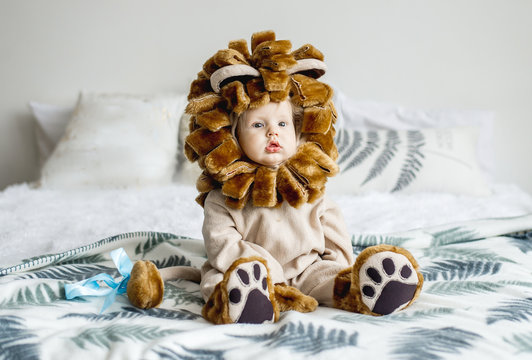 Handsome plump little child in a lion costume.