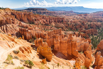 Beautiful views of the hoodoos amphitheater in Bryce Canyon National Park in Utah during a sunny summer day