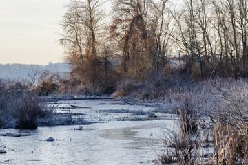 Frozen Marsh Inlet