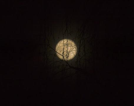Super Moon 19.02.2019