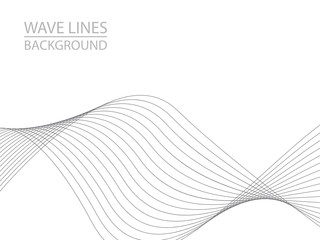 Abstract gray wave lines on white background. Can be used presentation, poster. Vector illustration.