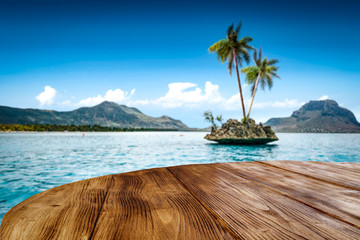 Wooden desk of free space and two coco palms.