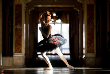 Beautiful ballerina dancing in a hall against the window.