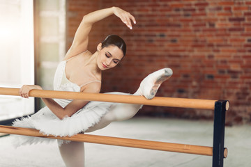 awesome attractive girl practising classical ballet. extensive training. close up photo.