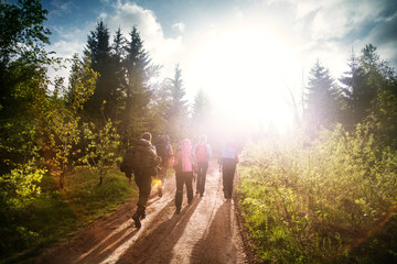 Group of tourists hiking in forest