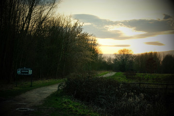 Upland path in the sunset