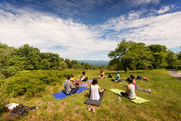 People practicing yoga in meadow