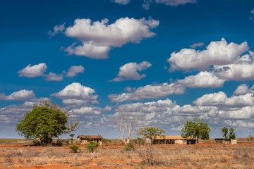 Wall Mural - Kenya. Africa. Poor buildings in a Kenyan village. Sunny day. Floating clouds. Life in the African savannah. Landscapes of savanna. Poverty in Kenya.