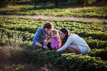 Couple crouching in fields with their baby daughter (6-11 months)