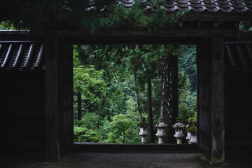 Trees and stone temple lanterns through wooden frame
