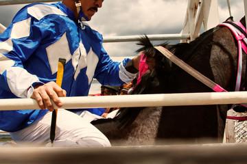 Dirt track horse racing in Colorado Dirt track horse racing in Colorado