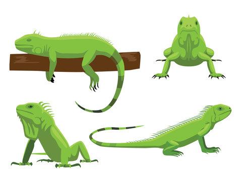 Cute Green Iguana Poses Cartoon Vector Illustration