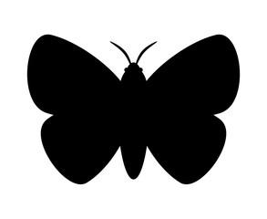 蛾のシルエット