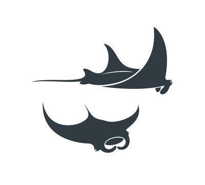 Stingray logo. Isolated stingray on white background. Manta
