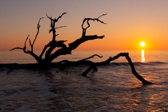 Sunrise - Jekyll Island, Georgia