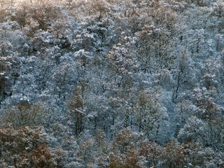 an aerial view of snow covered forest with hoarfrost covered trees in bright sunlight