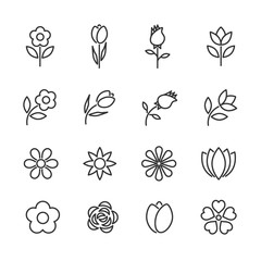 Vector set of flowers line icons.