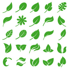 leaves web icon set. simple vector illustration. Concept for infographic, website or app.