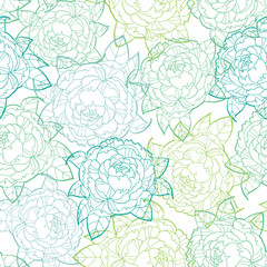 Seamless vector pattern peonies line art on white background, floral illustration