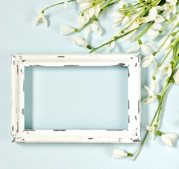 Spring background with a photo frame in gentle pastel colors with snowdrops. fletley. place for text. place for notes