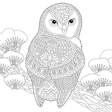 zentangle owl coloring page