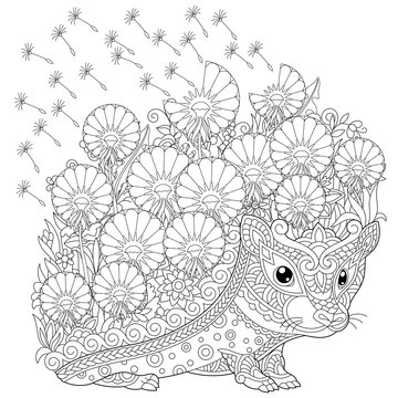 zentangle coloring page hedgehog and spring flowers